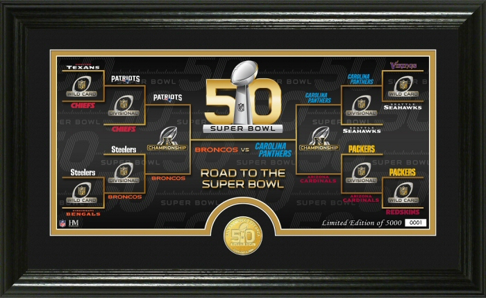 Road to Super Bowl 50 Bronze Coin Panoramic Photo Mint